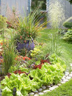 nützliche tipps für die garten gestaltung zusammenstellung Salad and Flowers mixed