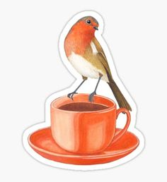 bird and cup