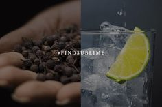 Cubeb Berries from Java bring peppery heat as well as a surprising floral aroma to our Ultimate Gin & Tonic. #FindSublime