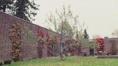 In Residence: Knud Holscher. Serie de Nowness. Corte de vídeo. Señala encima de la imagen para verla más grande. S Brick, Minimalist Home, Plants, House, Grande, Brick, Architects, Minimalist House, Home