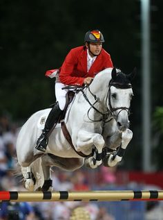 Cornet Obolensky 「Clinton x Rabanna van Costersveld」 Belgian Warmblood Stallion