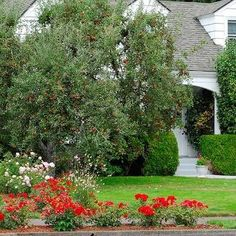 """8. Think Long Term 