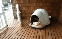 Looks so cosy! I want to get in with them