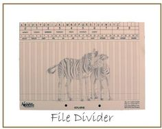The two prong punched file divider card depicts the Zebra and can be labeled with our self adhesive labels to write or print your own customised labels. African Tree, Giraffe, Elephant, Baobab Tree, Filing System, Zebras, Adhesive, Two By Two, Divider