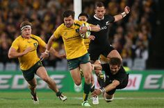 Richie Mccaw Photos Photos: Australia v New Zealand - The Rugby Championship Australia Rugby, Sydney Australia, Richie Mccaw, Ashley Cooper, Rugby Championship, All Blacks, August 17, Olympic Games, Olympics