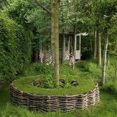 tree trunks, garden benches, gardens, trees, seats