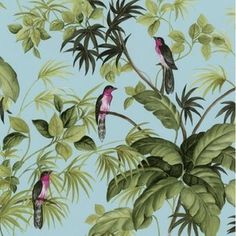 Luxury P&S International Tropical Exotic Birds Trees Leaves Wallpaper Roll Sample for sale Tree Leaf Wallpaper, Bird Wallpaper, Print Wallpaper, Wallpaper Roll, Tropical Birds, Exotic Birds, Tropical Leaves, Chinoiserie, Royal Dutch