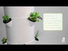 Brought to you by https://www.towergarden.com, this video shows you how to start the seedlings for your Tower Garden, a unique aeroponic vertical garden system that makes it easy to grow vegetables, tomatoes, herbs and lettuce in an urban garden, rooftop garden or patio garden. The seedling starter kit that comes with the vertical gardening syst... #verticalherbgardens #towergarden #urbangardening