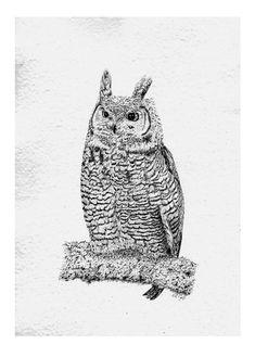Peter Tugwell – Great Horned Owl #inkdrawing #artcollective #sydneyartists #artsy #recycledpaper #birds #artmarkets #original #owls #Alaska #screechingowl  #sketch #sketching #draw #drawing #pencil  #galleryart #arte #illustration #artwork #artist #art #fineart #traditionalart #creative #creativity #progress Led Pencils, Great Horned Owl, Pencil And Paper, Cockatoo, Artist Art, Traditional Art, Owls, Sketching, Alaska