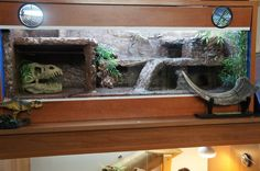 Your leopard gecko set up - Page 2 - Reptile Forums