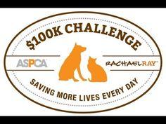 Meet the 2013 ASPCA Rachael Ray $100K Challenge Winners!