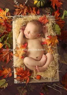 It's that time of the year! So cute :-) Thanksgiving photography ideas
