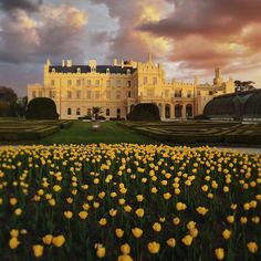 Add these incredible 12 UNESCO Sites to your Czech Republic travel list, taking in chateaux, towns and gorgeous countryside. Source: Beyond Prague: 12 Must-See UNESCO Sites for your Czech Republic Travel List Villa Tugendhat, Big Sur Hotel, California Coast, Travel List, World Heritage Sites, Czech Republic, Travel Pictures, Baroque, Places To See