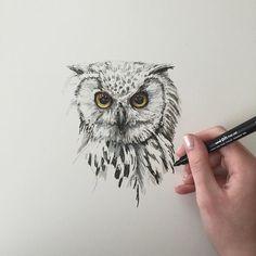 Any animal/bird requests?? #art #drawing #pen #sketch #illustration #owl #wildlife #bird #birdofprey #fabercastell #westdesignproducts