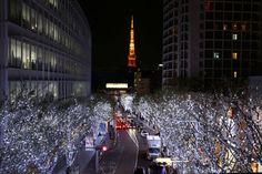 Tokyo lights at Christmas.
