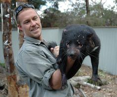 Innerhalb der nächsten 25 Jahre wird der Beutelteufel ausgestorben sein - wenn es nicht gelingt, die Seuche einzudämmen, an der immer mehr Tiere eingehen. Der  Versuch, die Population durch die Tötung infizierter Tiere zu retten, ist gescheitert. Doch vielleicht gibt es noch eine letzte Chance für den Tasmanischen Teufel.