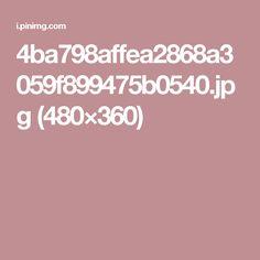 4ba798affea2868a3059f899475b0540.jpg (480×360)