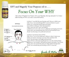 Young Living Essential Oils:   EFT Focus Magnify your Purpose