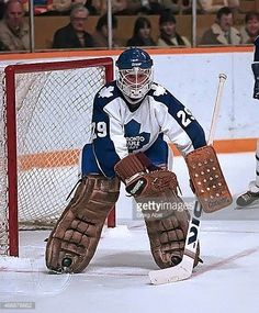 mike-palmateer-of-the-toronto-maple-leafs-prepares-for-a-shot-against-picture-id466878862 (506×612)