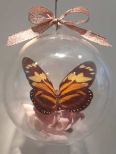 """Tithorea harmonia"" from Argentina    Clear ornament 80mm  $15.00 US Butterfly Ornaments, Clear Ornaments, Christmas Bulbs, Holiday Decor, Crafts, Argentina, Manualidades, Christmas Light Bulbs, Handmade Crafts"