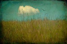 Jamie Heiden, just before, via Flickr.