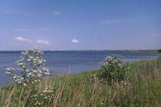 Ristinge Baltic Region, Odense, Skagen, The Little Mermaid, Copenhagen, Denmark, Scandinavian, Mountains, Beach