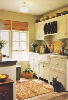 compact kitchen with a gracious style - love built-in plate racks.