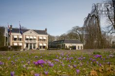 Oudkerk - Landgoed De Klinze - Hampshire Classic
