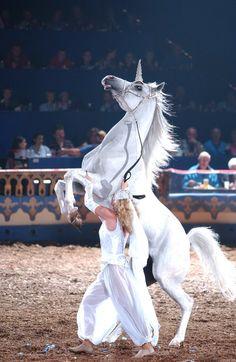 Arabian Nights - unicorn act.  Photo by Steve Priest - in FL.