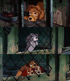 Disney 30 Challenge Day 8 saddest moment: Pound Scene Lady and the Tramp Disney Dream, Sad Disney, Disney Dogs, Disney Magic, Disney Films, Disney And Dreamworks, Disney Cartoons, Disney Pixar, Triste Disney
