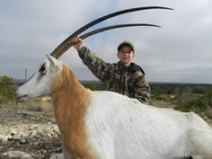 South Texas Exotics, Super Exotic Game Animal Hunts, Texas Exotic ...