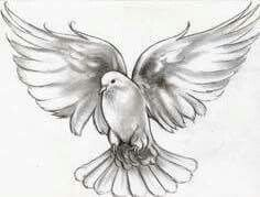 Dove tattoo designs are unisex and quite popular. Mainly because of the variety of meanings and other patterns that can be included in the dove tattoo. Dove Tattoo Meaning, Symbol Tattoos With Meaning, Symbolic Tattoos, Bird Drawings, Tattoo Drawings, Body Art Tattoos, Sleeve Tattoos, Memorial Tattoos, Dove Tattoo Design