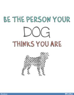 Be the person your dog thinks you are (: