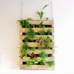 Add some green to your space with a living wall. This one is easily and inexpensively made out of an old shipping pallet!