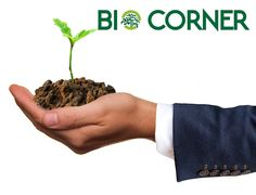 ΕΞΠΟΤΡΟΦ - BIOCORNER Parsley, Herbs, Food, Herb, Meals, Yemek, Eten