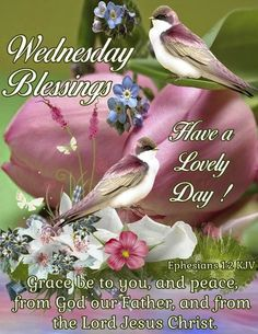 Wednesday Blessings good morning wednesday happy wednesday good morning wednesday wednesday blessings wednesday image quotes wednesday quotes and sayings Wednesday Morning Greetings, Blessed Wednesday, Happy Wednesday Quotes, Good Morning Wednesday, Good Morning Good Night, Goid Night, Wednesday Memes, Wonderful Wednesday, Happy Friday