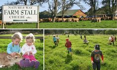 natures way farmstall - Google Search