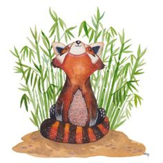 Ginger the Red Panda was inspired by a trip to the Singapore Zoo. A particularly impish and energetic red panda was the muse for this bright and vivid painting. Fox Art, Bear Art, Panda Illustration, Panda Drawing, Penguin Art, Panda Art, Unicorn Art, Animal Drawings, Artwork Prints