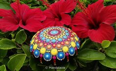 "New! Mandala Spring Blossom 16 While we walk on the Gran Canarian beaches, we select stones that ""tell a story"" (anyone would say..."
