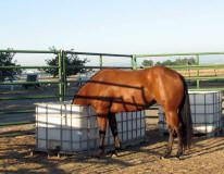 Sturdy easy to make feeder and waterers!