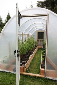 garden journal // July 28 fava beans and ground cherry cucumbers and romaine flowering leek herb boxes on the patio more artichokes coming golden delicious orange banana tomato, in the hoop house for last night's din… Tunnel Greenhouse, Build A Greenhouse, Greenhouse Gardening, Hydroponic Gardening, Homemade Greenhouse, Vegetable Garden Design, Veg Garden, Garden Cottage, Garden Beds
