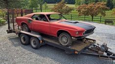Rare Find: Very First 1969 Ford Mustang Mach 1 Ordered With Super Cobra Jet Drag Pack & Gears Ford Mustang Shelby Cobra, Mustang Mach 1, Mustang Fastback, Mustang Cars, Ford Mustangs, Car Barn, Classic Mustang, Old Race Cars, Pony Car