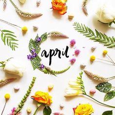 "2 tykkäystä, 1 kommenttia - @clscx Instagramissa: ""Hello April 🌻 exciting month 😬💙💘 #April #1stapril #newmonth"""