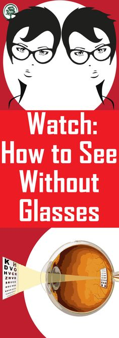 How To see Clearly Without Glasses Using a Simple Trick! Trick requires just one human hand. The post How To see Clearly Without Glasses Using a Simple Trick! appeared first on Best Pins. Home Remedies, Natural Remedies, Cute Pug Pictures, Healthy Teeth, Stay Healthy, Healthy Life, One With Nature, First Humans, Cute Pugs
