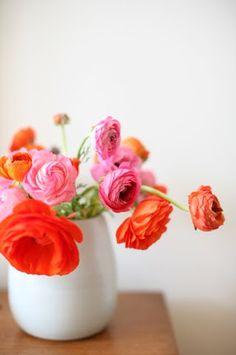 flowers. pops of color against white.