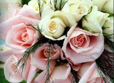 I colori della sposa per il 2015? ....i delicati, tutti i colori che la natura ci suggerisce ....per istinto o per passione.......perché l'abito da sposa più bello e' quello che nasce da chi lo crea con il cuore....abito DOMO ADAMI. Alessandro Nero Tosetti #abitidasposa #wedding #weddingdress #nozze #bride