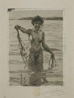 Anders Zorn: Seaweed