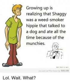 """Growing up is realizing that Shaggy was a weed-smoker hippie that talked to a dog and ate all the time because of the munchies. Stoner Quotes, Stoner Humor, Weed Quotes, Weed Memes, Weed Humor, Funny Quotes, Medical Cannabis, Stoner Art, Humor"