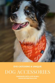 Discover our beautiful Dog Accessories, handmade in Bali. of all profit is donated to the Bali Animal Welfare Association BAWA. Look good, do good! Animal Welfare, Dog Bandana, Beautiful Islands, Bandanas, Dog Accessories, Beautiful Dogs, Bali, Collars, Hand Weaving