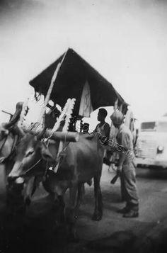 Soerabaja 1949. Riksja grobak op de kali Mas
